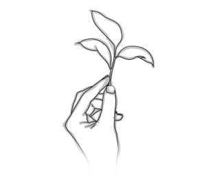 Skizze von einem Halm mit 3 Blättern, die in eine Hand nach oben gehalten werden